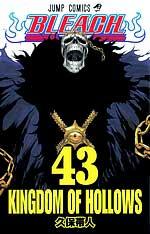 manga bleach tom 43